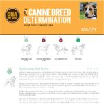 An extract of an example DNA My Dog Test Breed Determination Report
