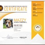 Esempio di Certificato del Test DNA My Dog