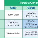 Grafico coi Risultati del Test del DNA per l'Iperuricosuria