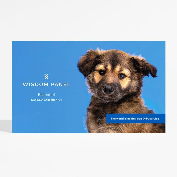 Kit Per Test Razze Canine Wisdom Panel Essential