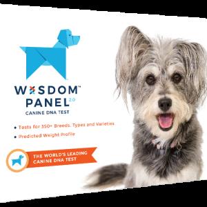 Test Razze Canine Wisdom Panel
